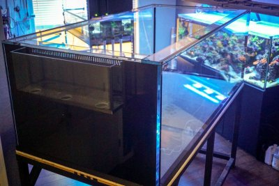 Miracles Aquarium-3.jpg