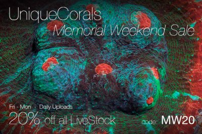 Memorial-weekend-20off-V4.jpg