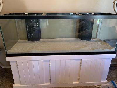fish tank 3.png