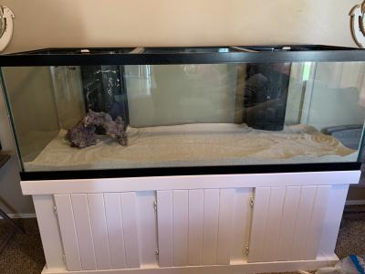fish tank 4.png