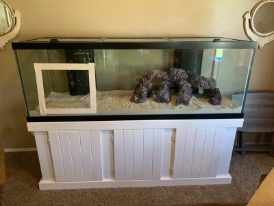 fish tank 7 .png