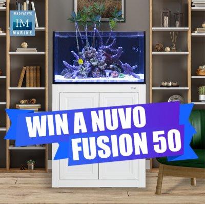 FUSION50.jpg