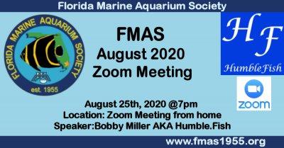 FMAS fb aug 2020.jpg