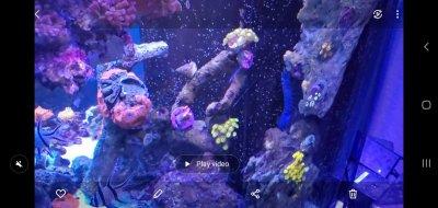 Screenshot_20200823-201121_Gallery.jpg