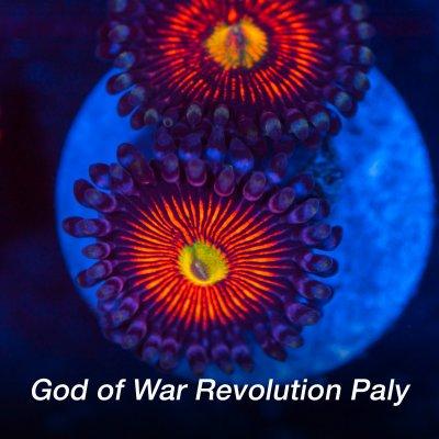 GOW-revolution-1200x1200.jpg