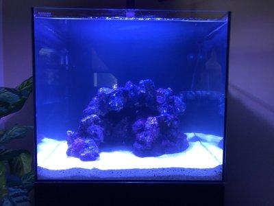 New Nano 20 Aquascapr.JPG
