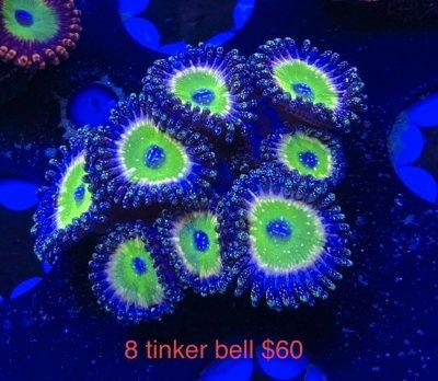50652505-9DF2-4513-8F51-5658BD129303.jpeg