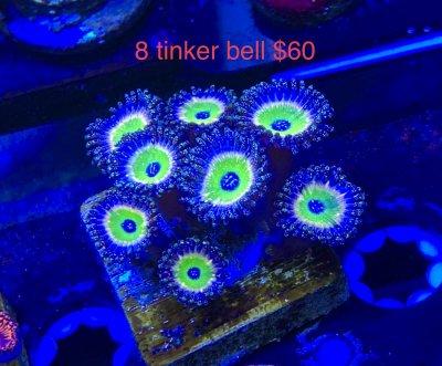 7B0160A1-FCC6-45BB-8424-EA5DF4A1E73D.jpeg