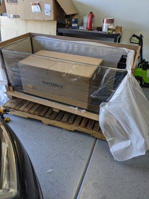 Delivered-check.jpg