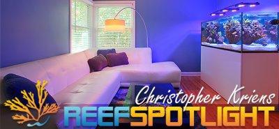 Reef Spotlight January 2015: Chris' Algae Farm (ELOS 160)
