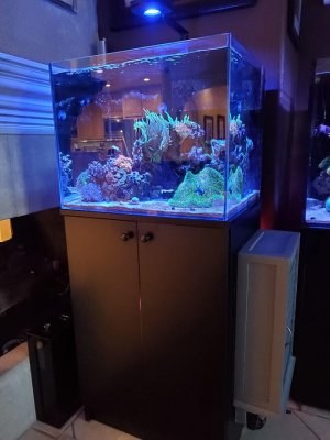 40g nem tank with control panel box.jpg