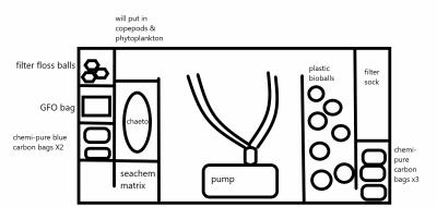 Tank filter setup.png