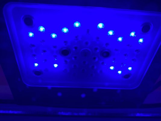 D841D4BA-A9CA-4CED-B77A-E9D74CCAC060.jpeg