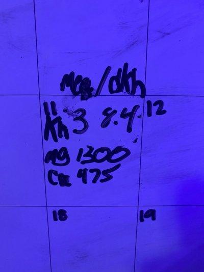 5D45885A-5DCC-4D27-BE55-8CAAC1882836.jpeg