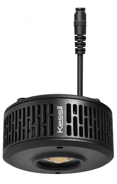 Kessil-A360X-Tuna-Blue-LED-Light-99.jpg