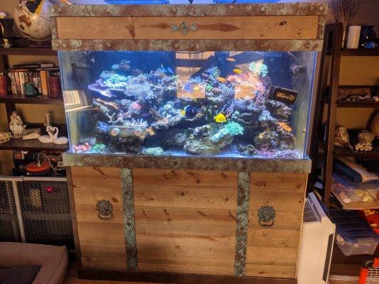 Treasure Chest Aquarium.jpg