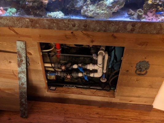 TC Aquarium Stand Opening.jpg
