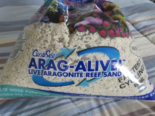 CaribSea Arag-Alive.JPG