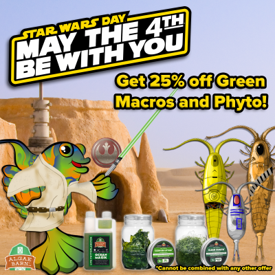 May the Fourth FB (1).png