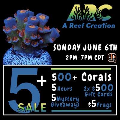 live sale 1000x1000.jpg