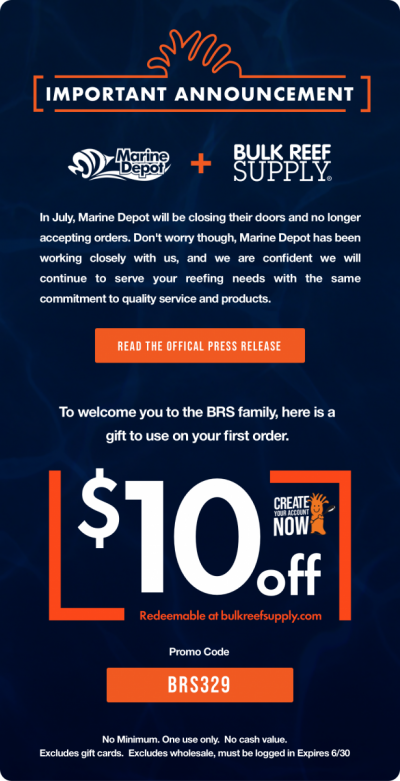MD 10off email [Email One].png