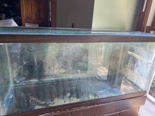 Fish Tank 4.jpg