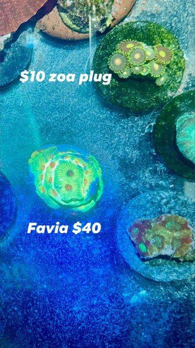9D0F2FF2-BB6E-4F41-B728-F21884F86180.jpeg