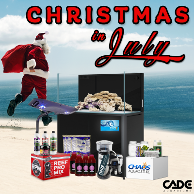 Christmas in July 2021 IG.png