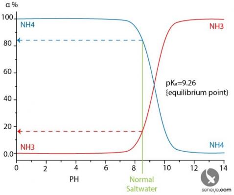NH3-NH4 equlibrium.PNG