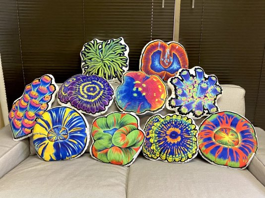 Coral pillows! Time to match your decor to your tank!