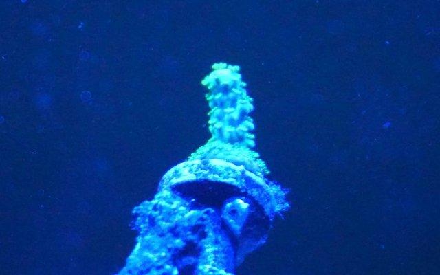 green-slimer.jpg