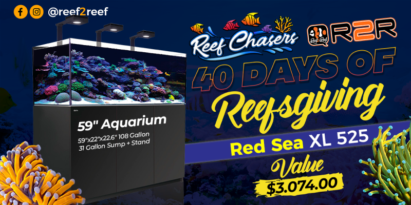 Reef Chasers 40 Days of Reefsgiving!! WIN a Red Sea XL 525 (valued at $3,000+)!!