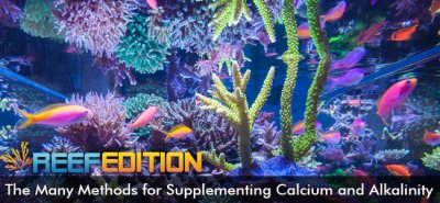 The Many Methods for Supplementing Calcium and Alkalinity