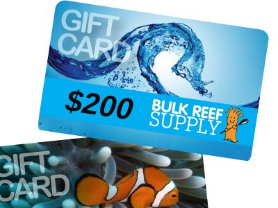 Giveaway: BRS Black Friday/Cyber Monday $200 Gift Certificate