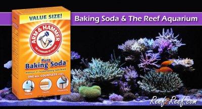 BAKING SODA & THE REEF AQUARIUM