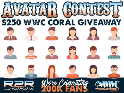 Reef2Reef 200K Fans Avatar Contest! Win Corals From WWC!