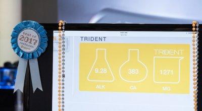 Trident-main3 copy.jpg