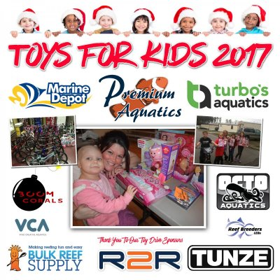 Toys For Kids 2017! The kids win and you could win big as well!