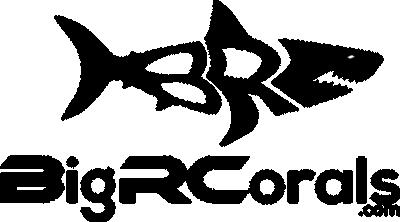 bigrcorals 2.png