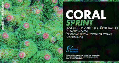Coral Sprint label.png