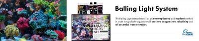 FM_Balling_Light_System_2_englisch.jpg