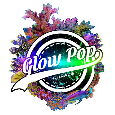 glow pop corals logo 2.png