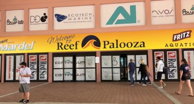 Reefapalooza Orlando 2018 Complete Walk Through