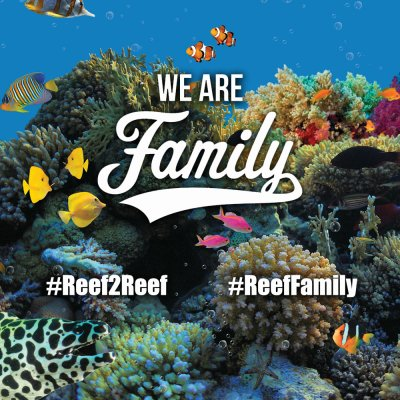 Not a Forum but a Family! #ReefFamily Giveaway