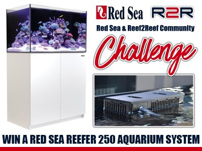 The R2R Community Red Sea Reefer 250 Challenge! WIN A $1500 System!