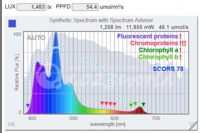 1425_spectrum.JPG