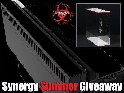 The Synergy Reef Summer Giveaway (3 Winners)