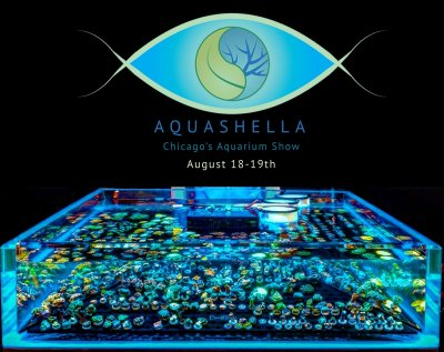 Introducing Aquashella! An Aquarium Festival Like None You've Ever Seen!
