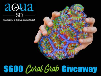 The AquaSD $600 CORAL GRAB GIVEAWAY! 3 WINNERS!!