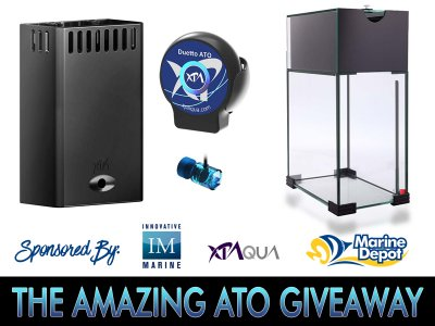 The AMAZING ATO GIVEAWAY: co-sponsorsed by XP Aqua, Innovative Marine & Marine Depot